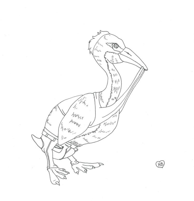 AnimalAlphabetHesperornis